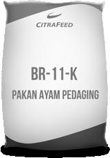 BR-11-K