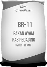 BR 11