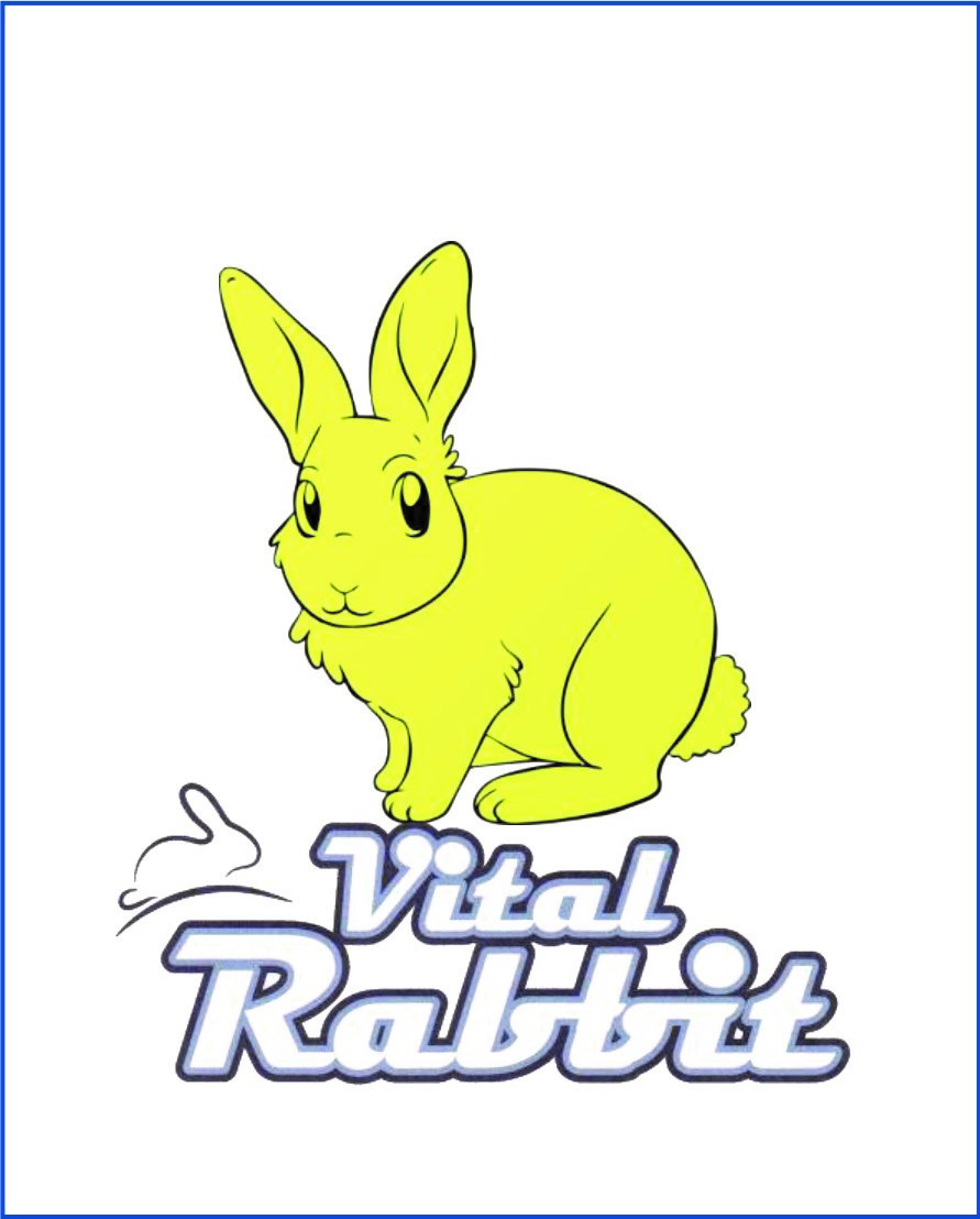 logo vital rabbit