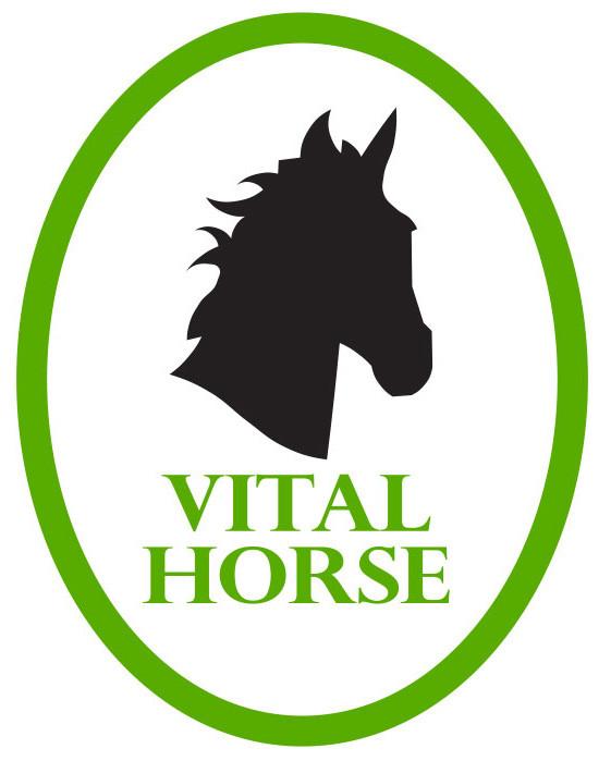 logo vitalhorse